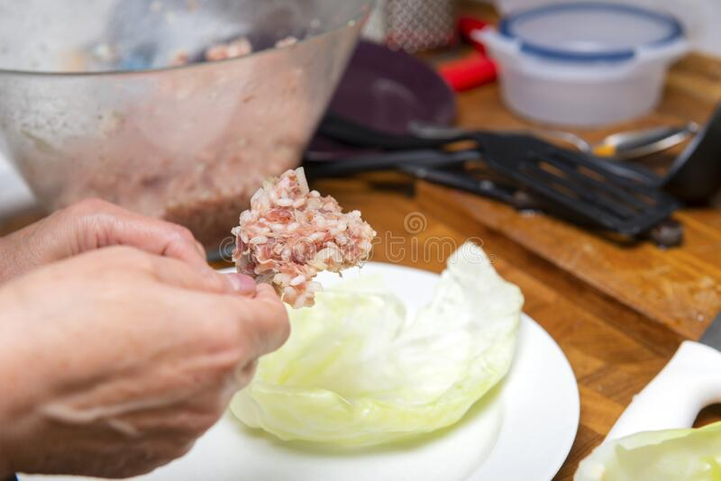 Preparation of stuffed cabbage, minced rice put on a cabbage leaf royalty free stock photo