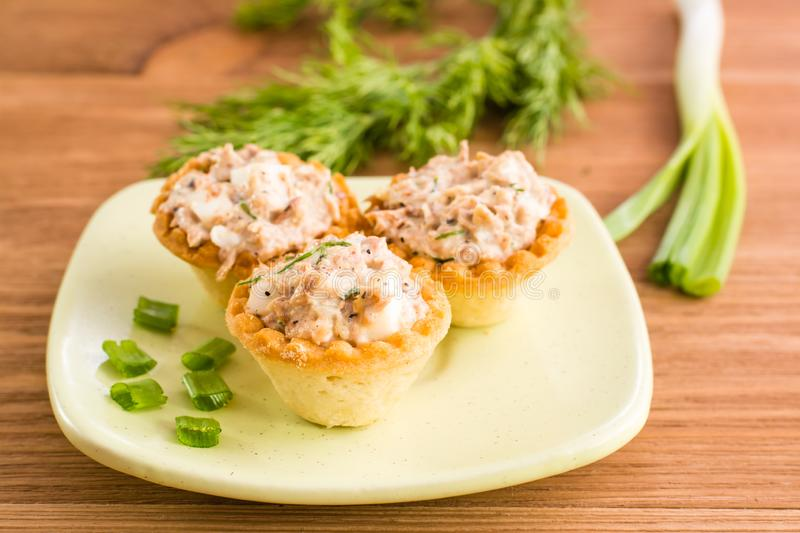 Tartlets with salad on a saucer and fresh herbs royalty free stock photo