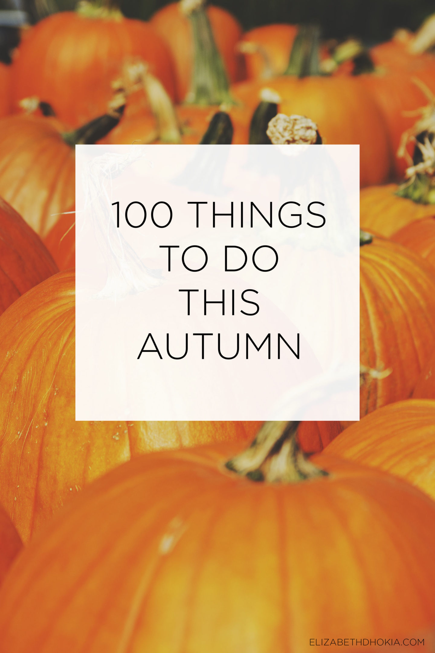 Rows of pumpkins and a caption saying 100 Things To Do This Autumn